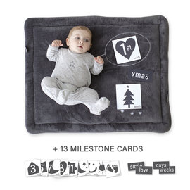 Parklegger Softy 75x95cm INSTA Milestone carts grey